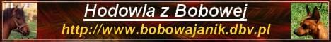 Hodowla z Bobowej