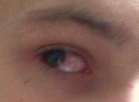 http://images23.fotosik.pl/199/26117836e773cbb0.jpg