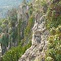 Skalna ściana na której są Ogrody Egzotyczne #MonacoIMonteCarlo