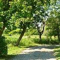 #droga #ścieżka #wakacje #lato #widoki