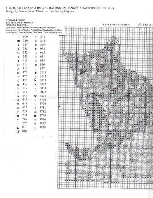 gatos em linha1.jpg