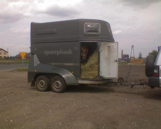 Foto z podrózy... Czesto koń wozi.. teraz wożą jego.. ;-) #koń