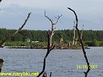 images23.fotosik.pl/6/45cfaa77f6b172fam.jpg