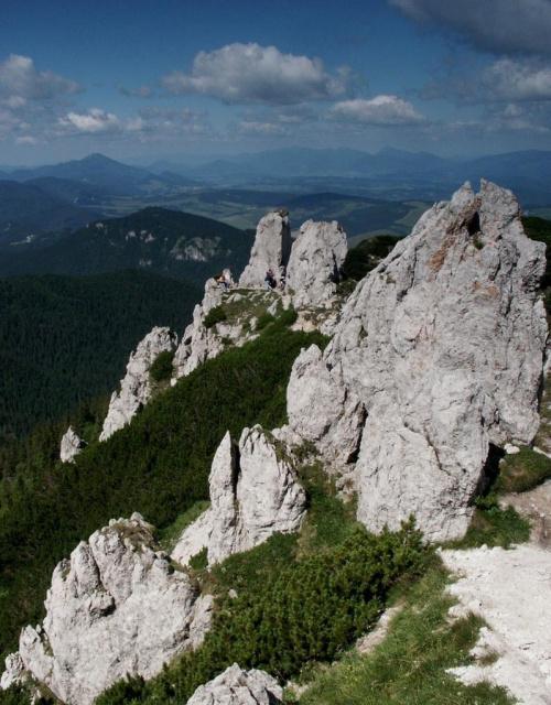 Rzędowe Skały - Masyw Siwego Wierchu #góry #mountain #Tatry #Zachodnie #Siwy